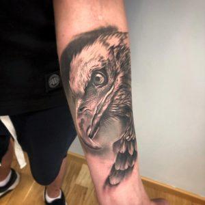 Tatuaż realistyczny ptak - Ponton Tattoo School